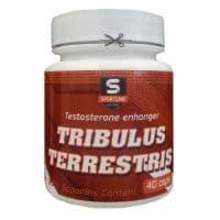 SportLine Трибулус террестрис 40 капсул по 350 мг (90% сапонинов)